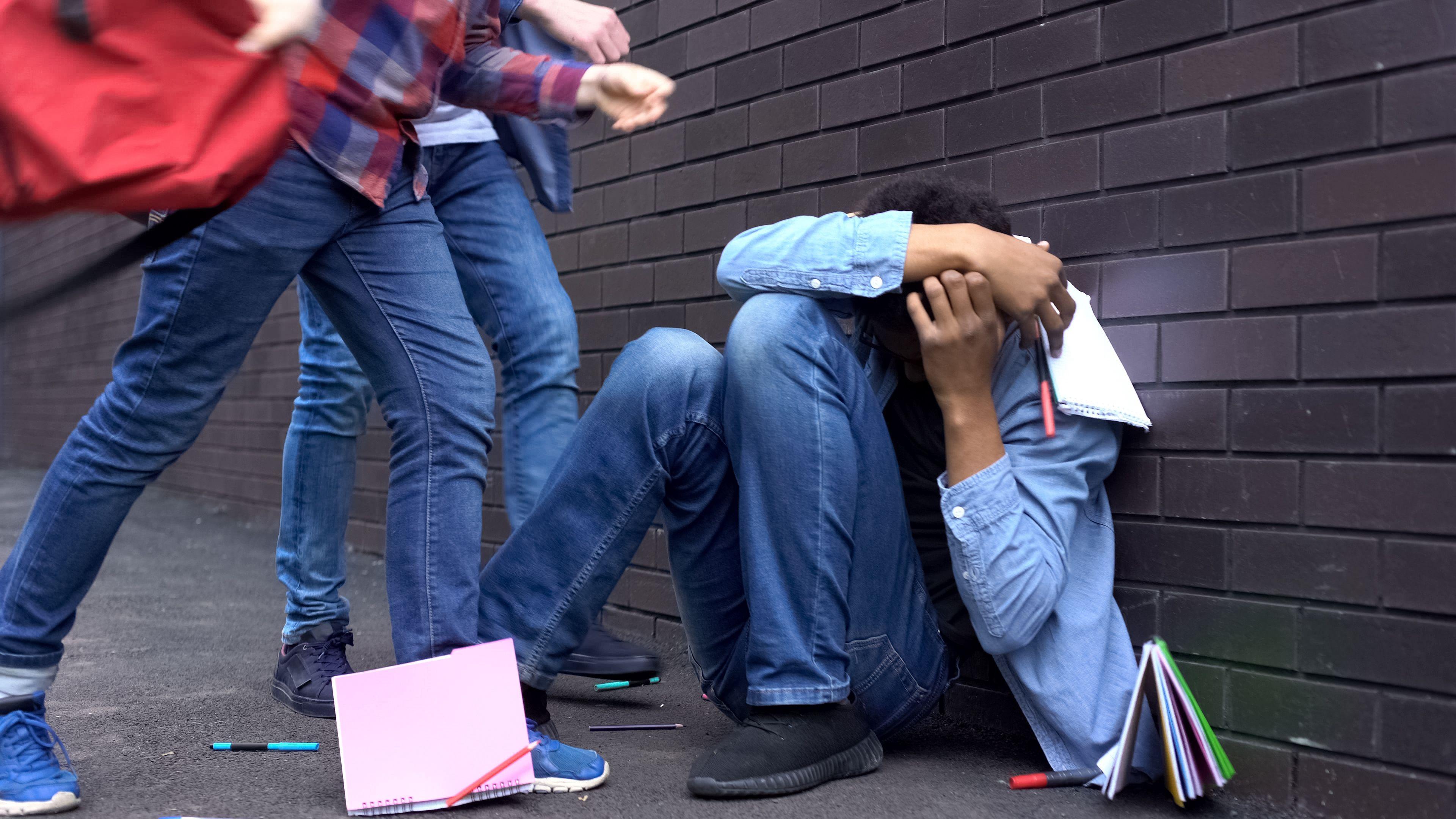 Могут ли нейронауки предсказать подростковую агрессию?