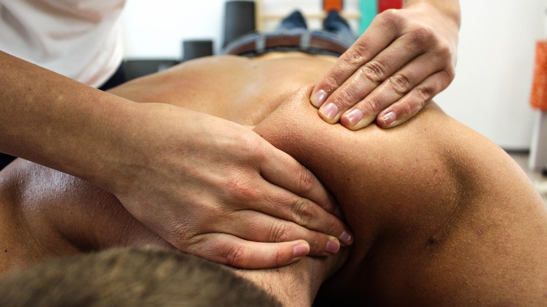 Нервные механизмы расслабления включаются даже после поглаживания