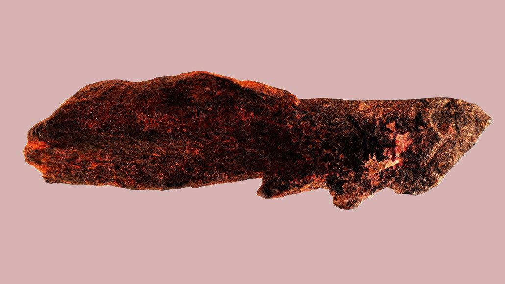Найден древнейший костяной наконечник, сделанный задолго до человека разумного