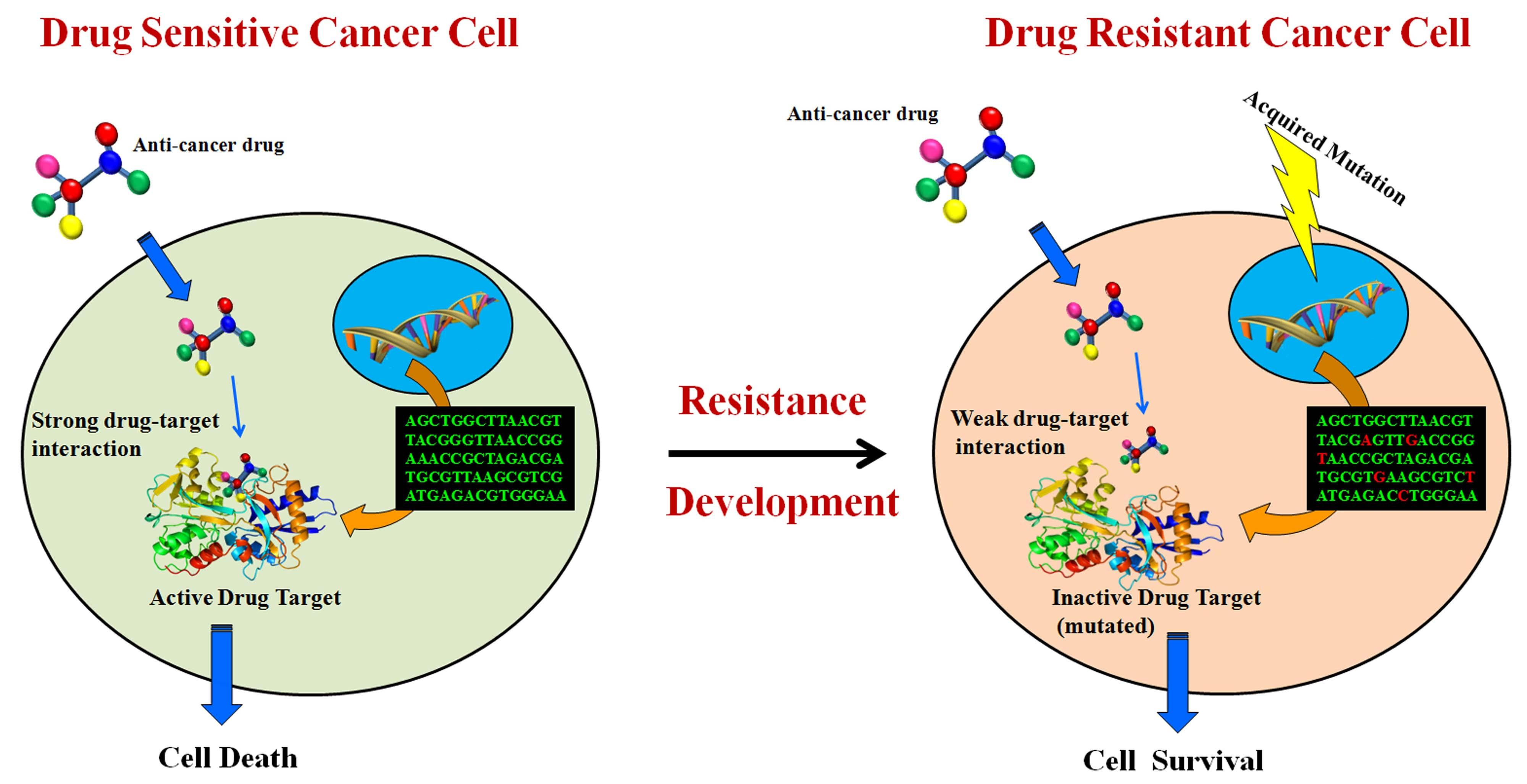 Система искусственного интеллекта подбирает наиболее подходящую терапию рака