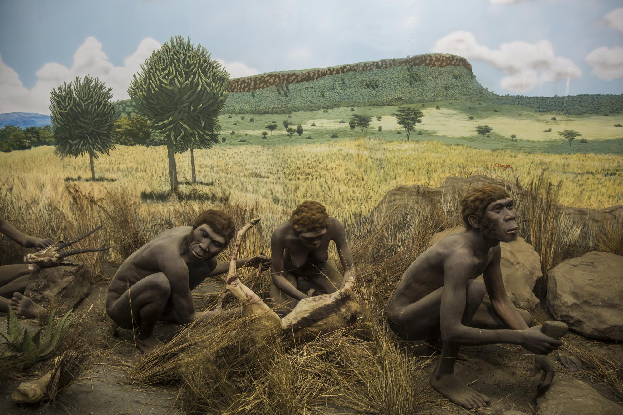Миграции предков шли в обход Европы
