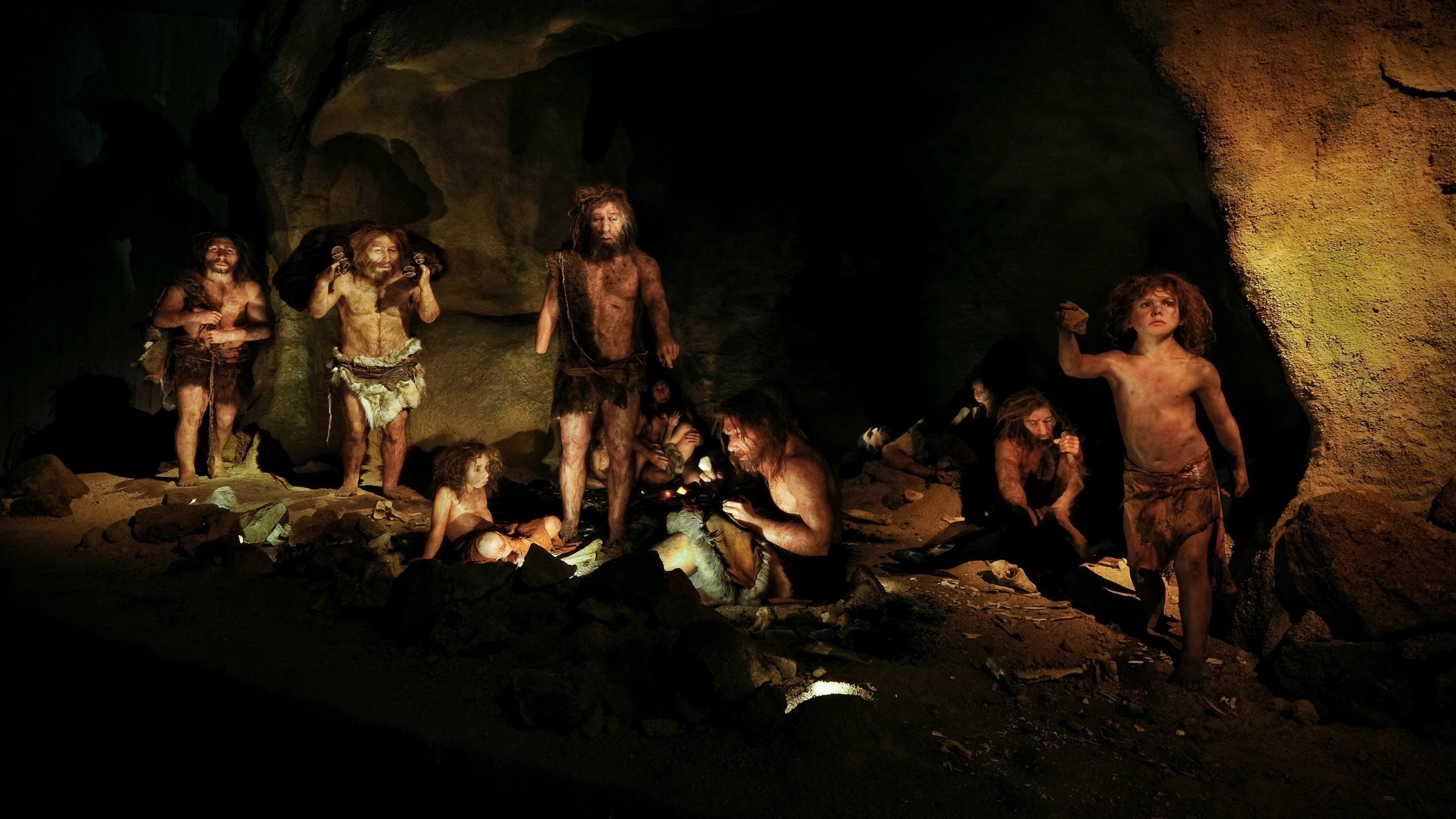 Кто кого, или Интимные подробности любви сапиенсов и неандертальцев