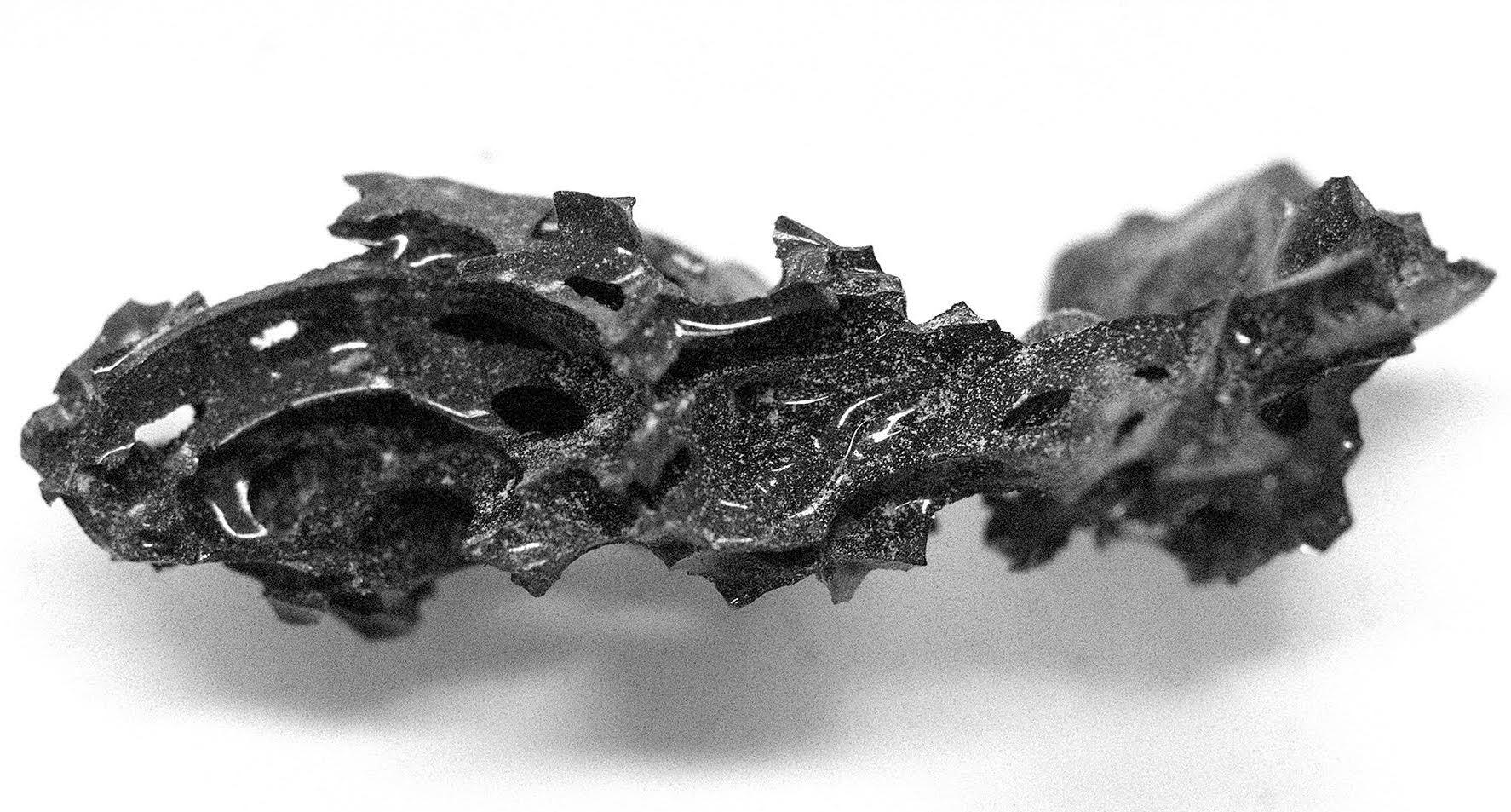 Вулкан на службе нейронаук: обнаружены 2000-летние нейроны человеческого мозга