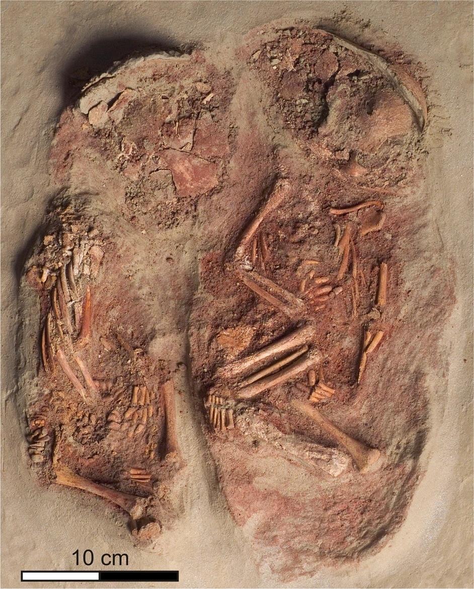 Близнецы каменного века