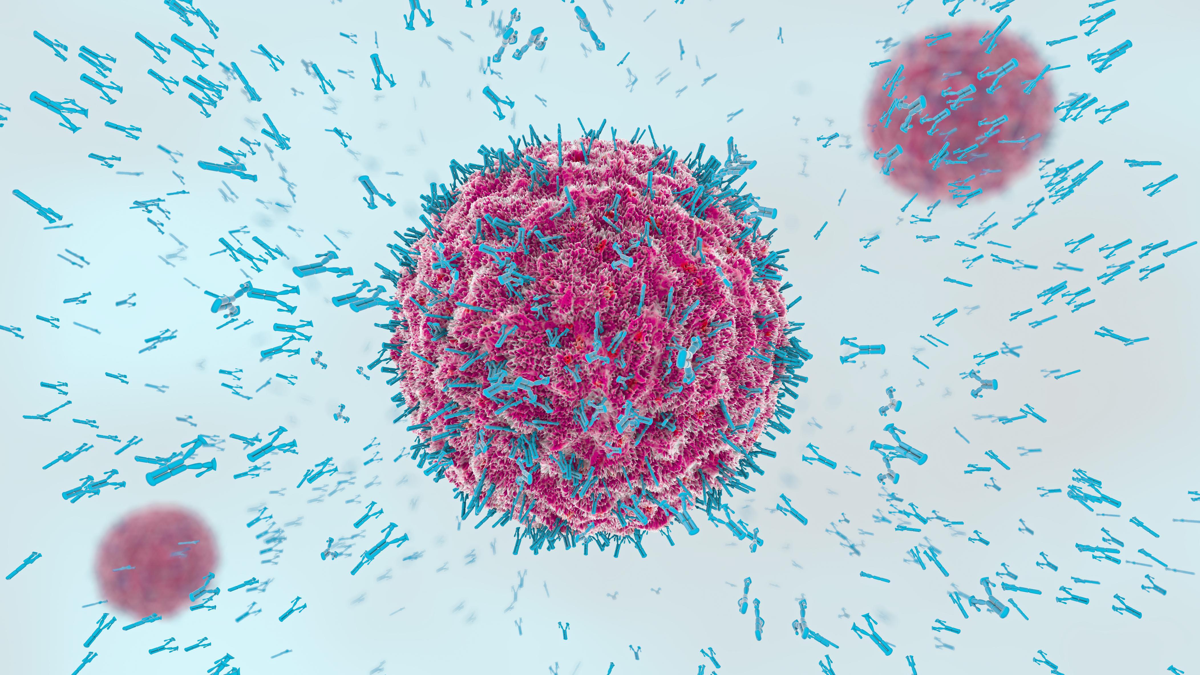 Антитела против коронавируса остаются с нами надолго