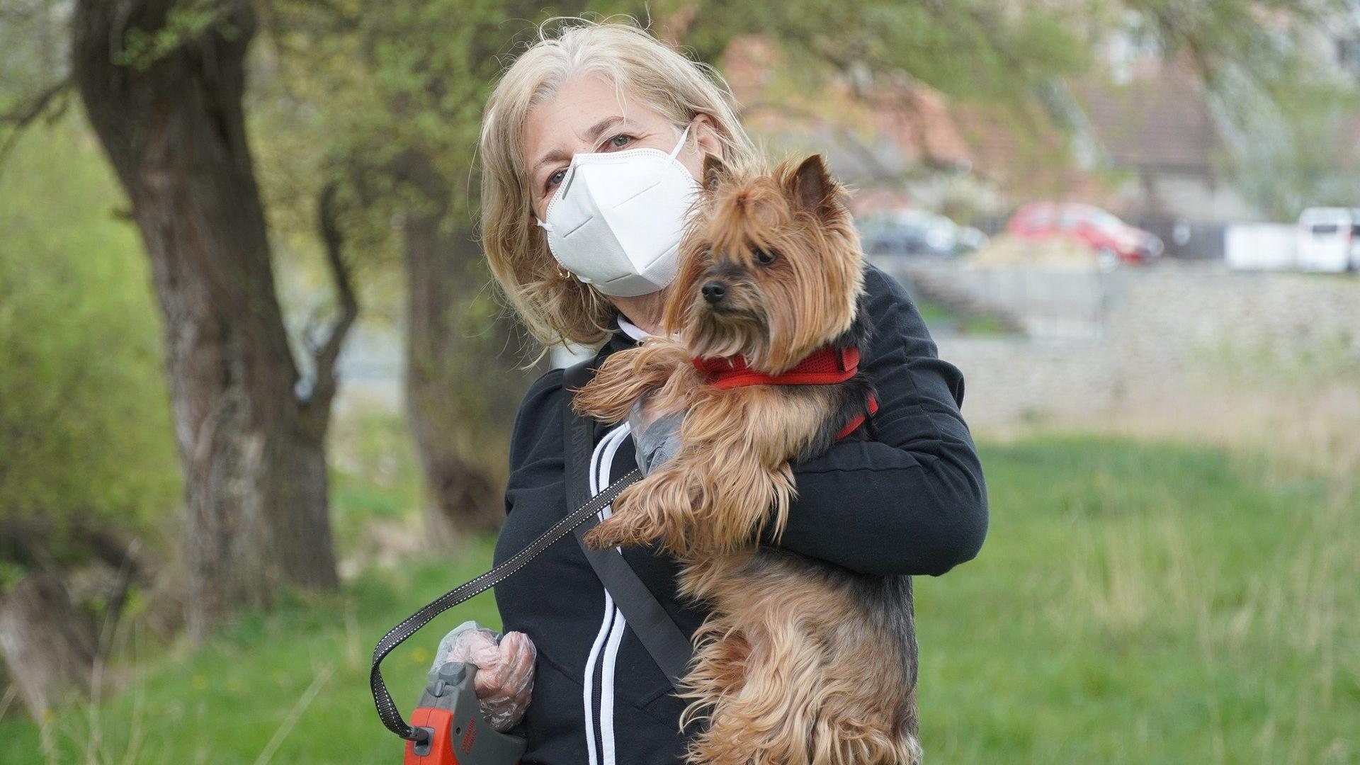 Собачники подвержены высокому риску заражения SARS-Cov-2
