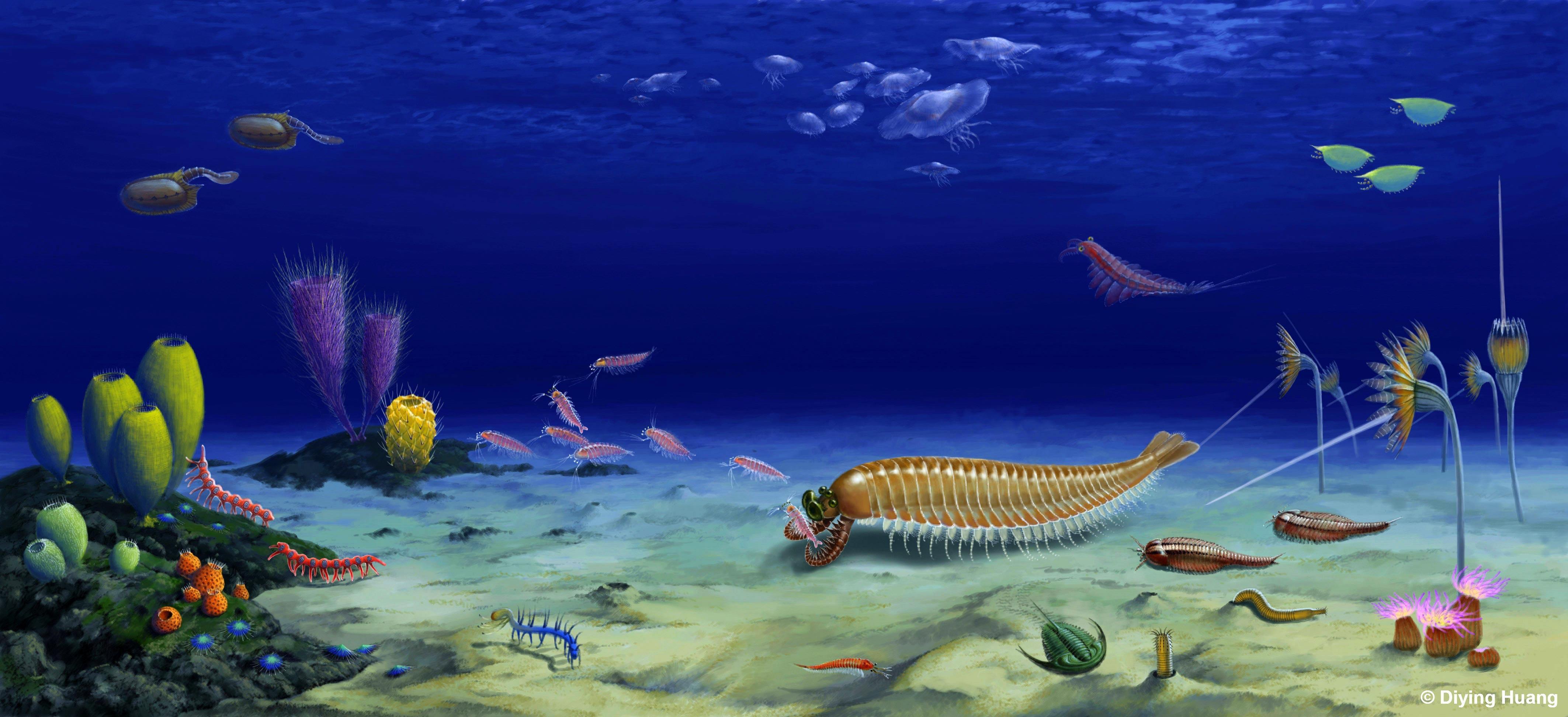 Ученые нашли окаменелость членистоногого с пятью глазами