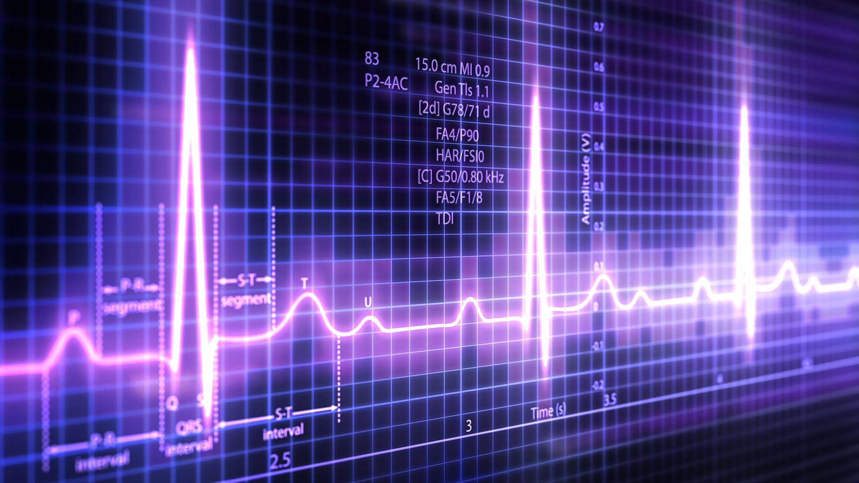 Костный гормон помогает сердцу держать ритм