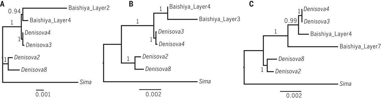 Денисовцы населяли Тибет в течение 100 тысяч лет