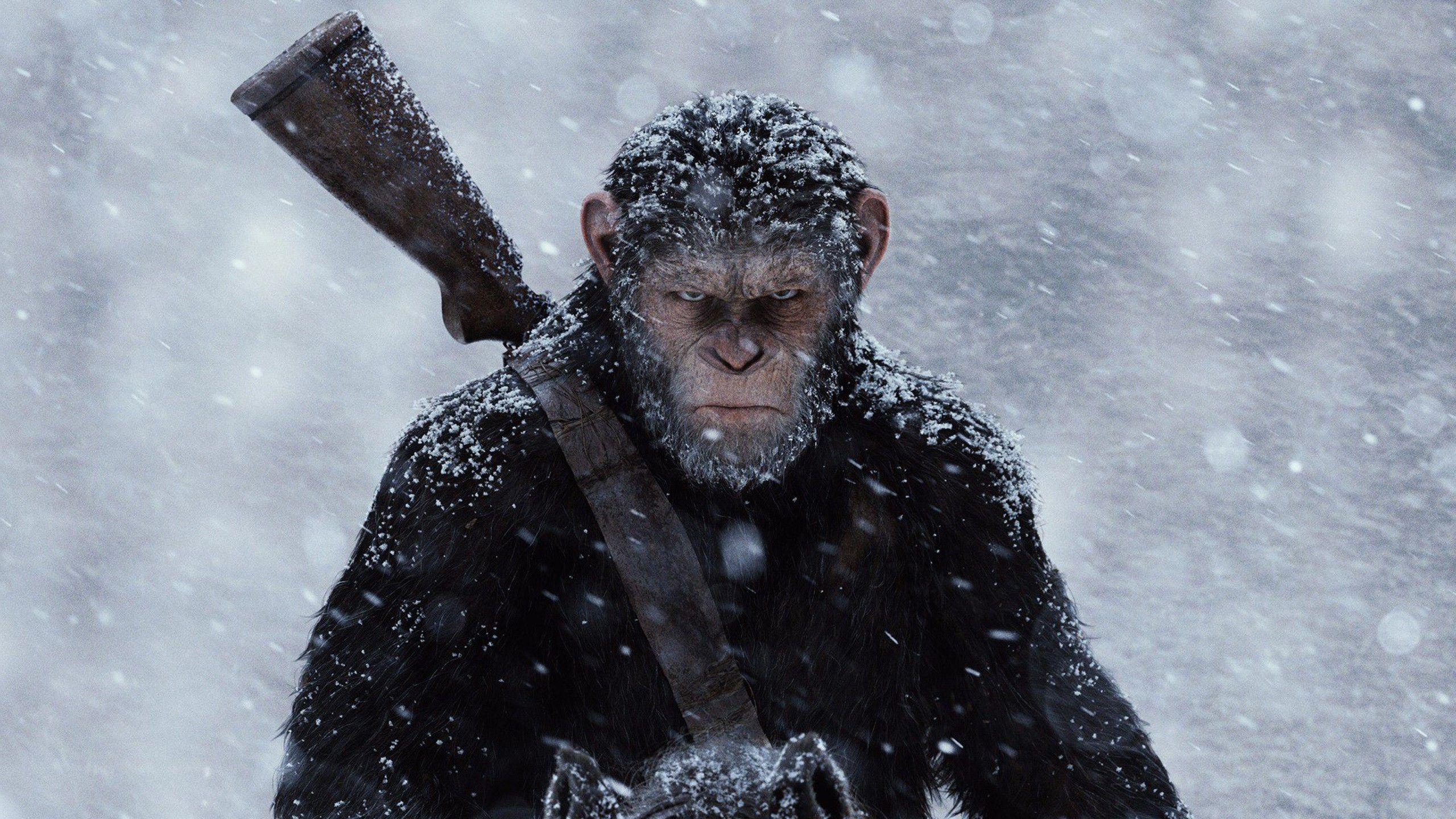 Первый шаг к «Планете обезьян» сделан