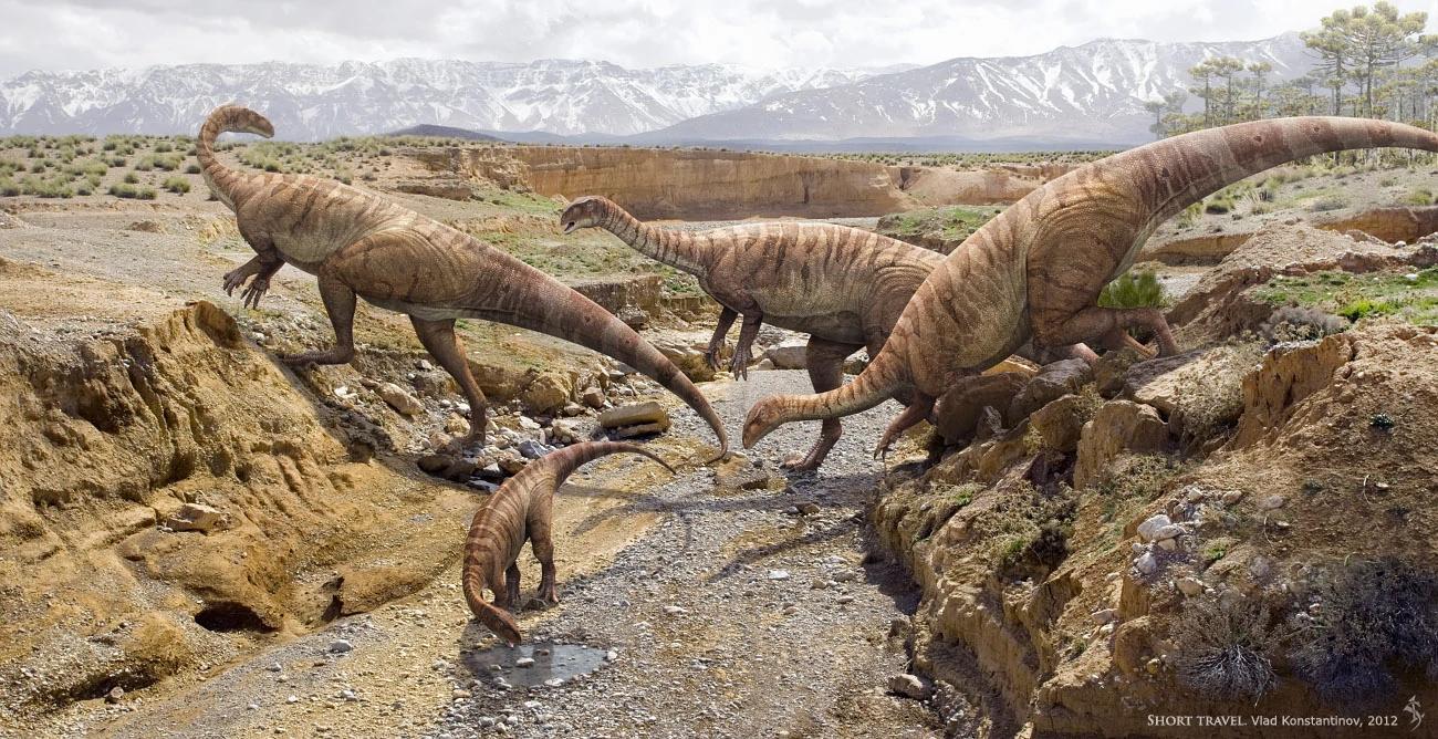 Детеныш огромного динозавра оказался копией взрослого
