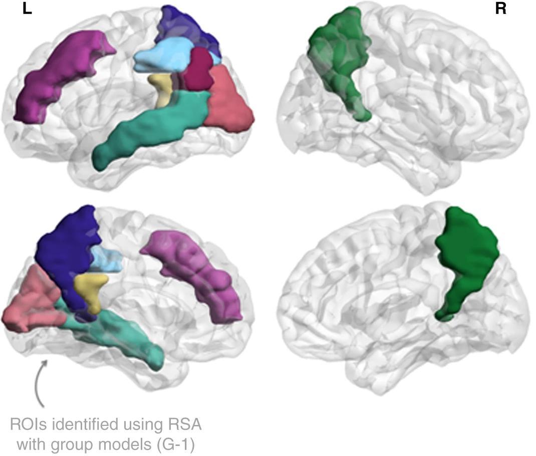 Где хранятся элементы воспоминаний в мозге?