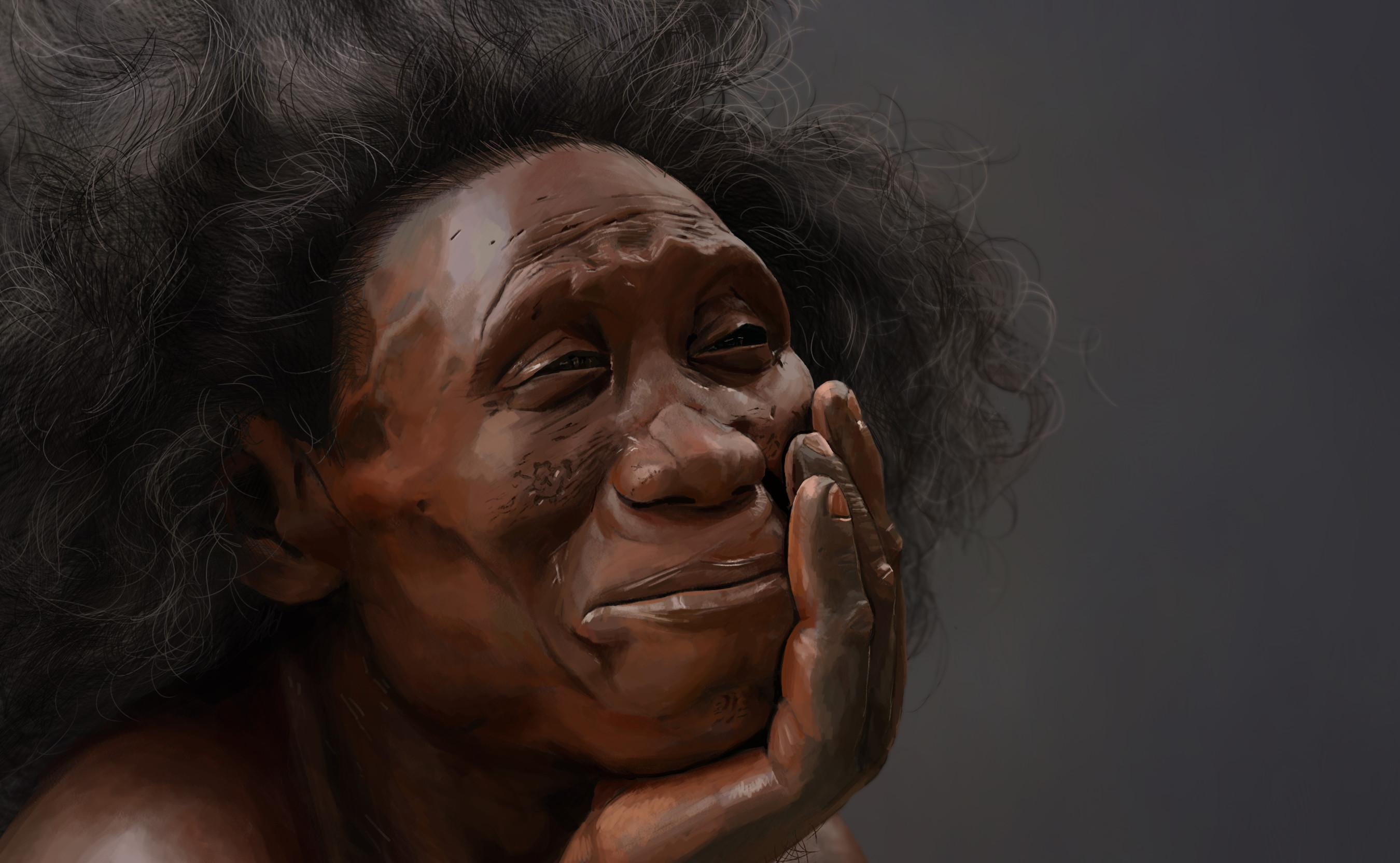 Островная лисица пролила свет на эволюцию Homo floresiensis