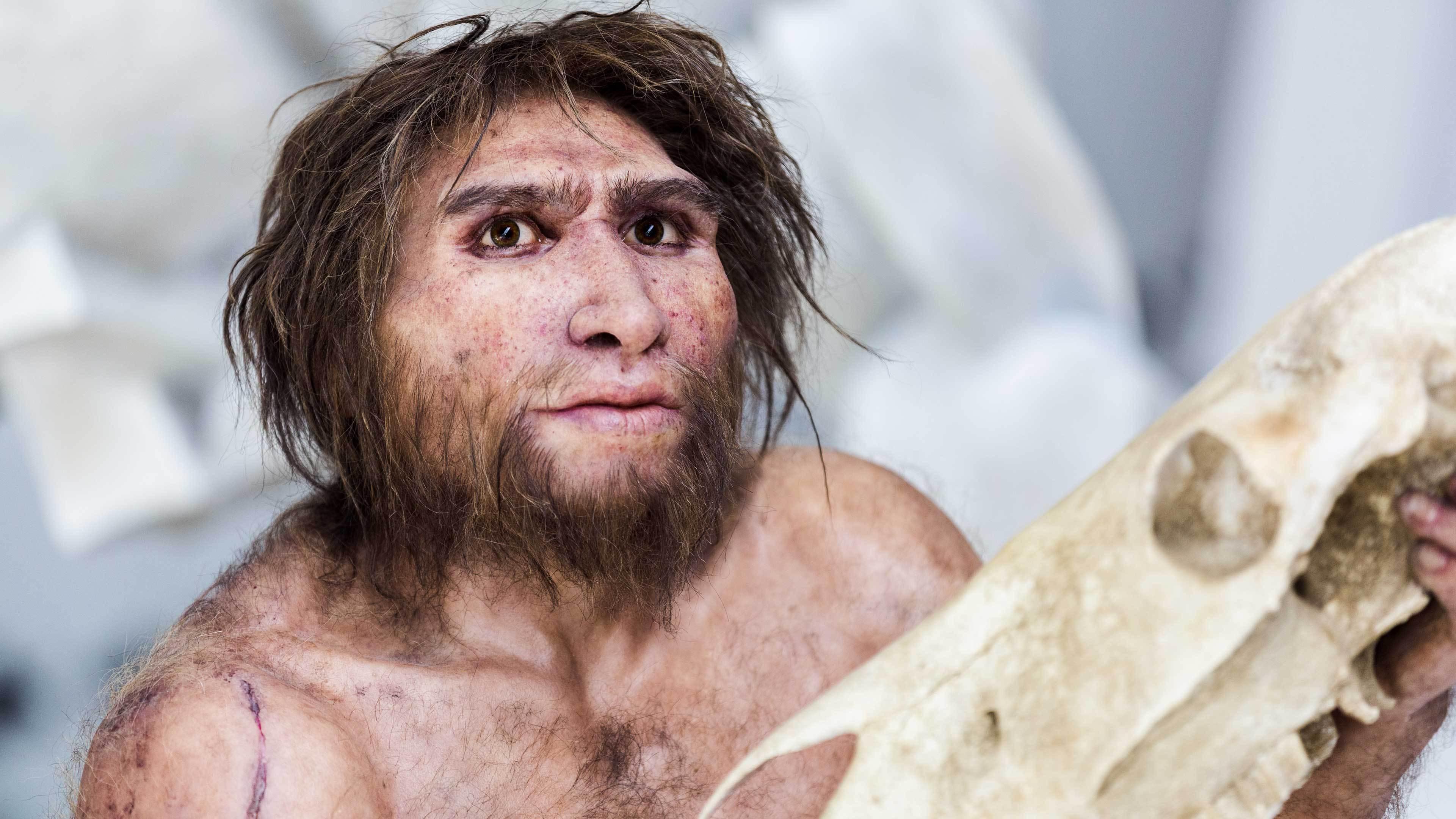 Древние люди могли впадать в спячку, чтобы пережить холода