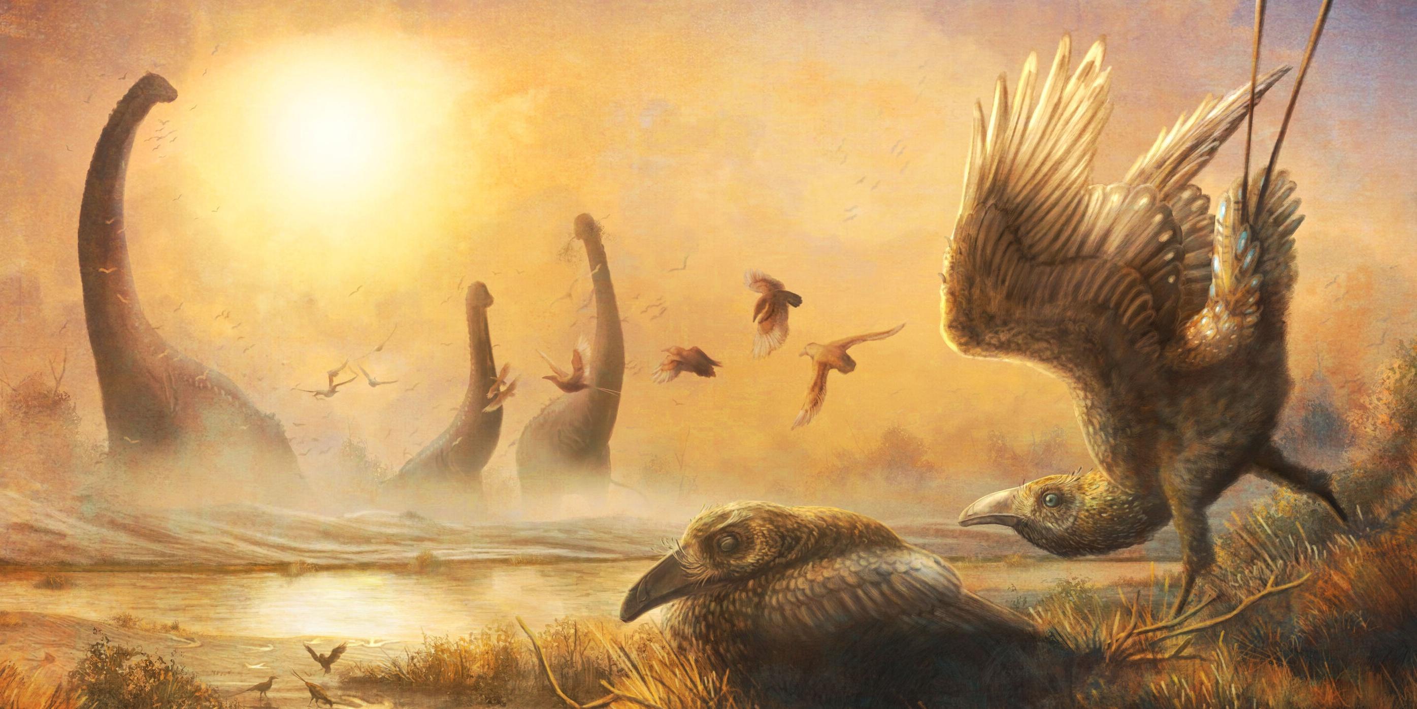 Доисторические птицы имели сенсорные органы в клюве для поиска пищи