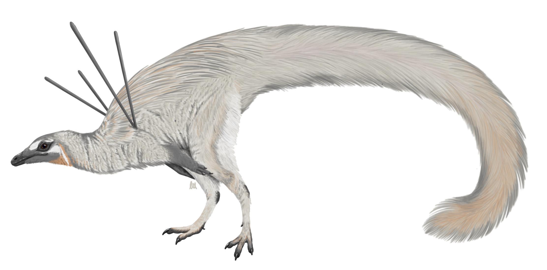 Обнаружен новый вид динозавра с длинными шипами, торчащими из плеч