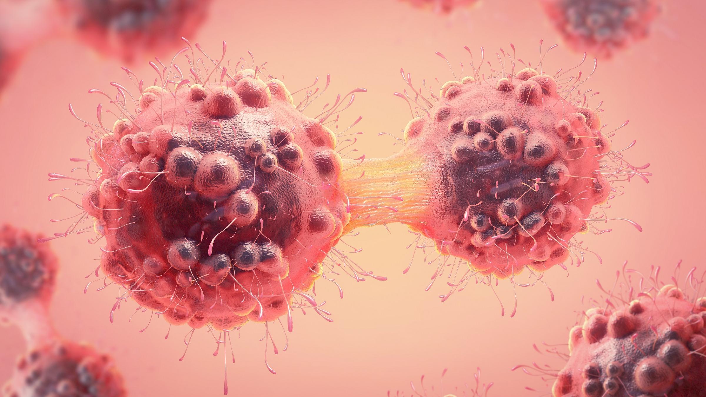 Израильские ученые нашли «ахиллесову пяту» большинства раковых клеток