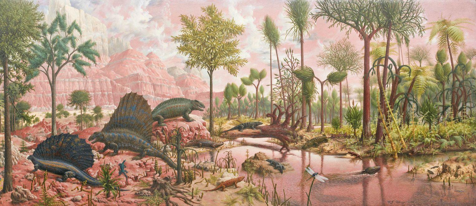 Ученые выяснили, что цветковые растения появились еще в домеловом периоде