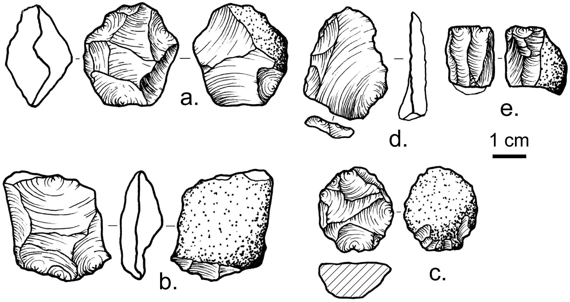 Культура среднего палеолита просуществовала на 20 тысяч лет дольше, чем считалось