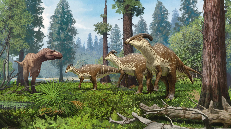 Череп «гребнистого» динозавра рассказал о его предназначении