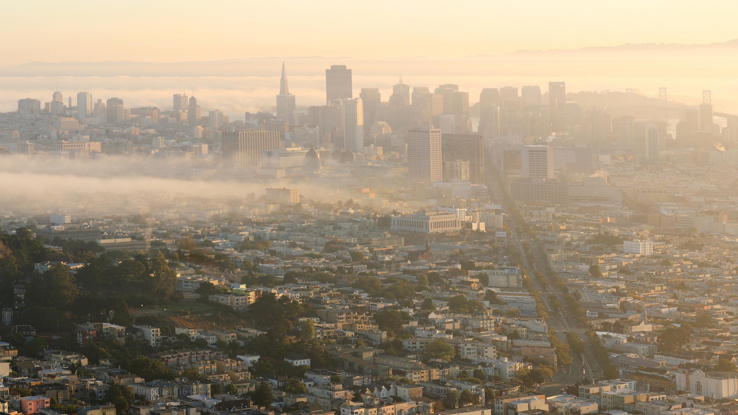 Загрязнение воздуха связано с увеличением риска возрастной макулодистрофии