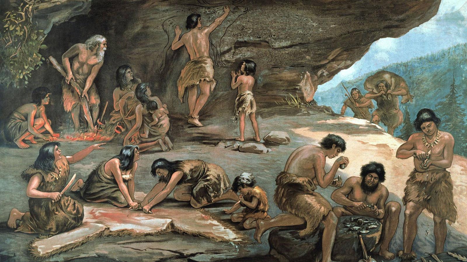Окружающая среда сделала наших предков более дружелюбными