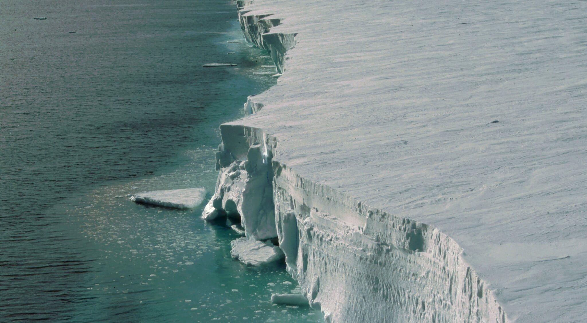 Странные существа, случайно обнаруженные под ледниками Антарктиды