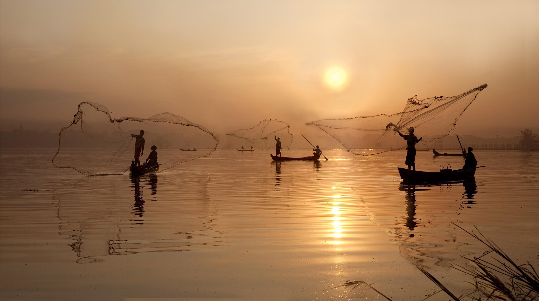 Человек нанес ущерб биоразнообразию рыб в половине рек
