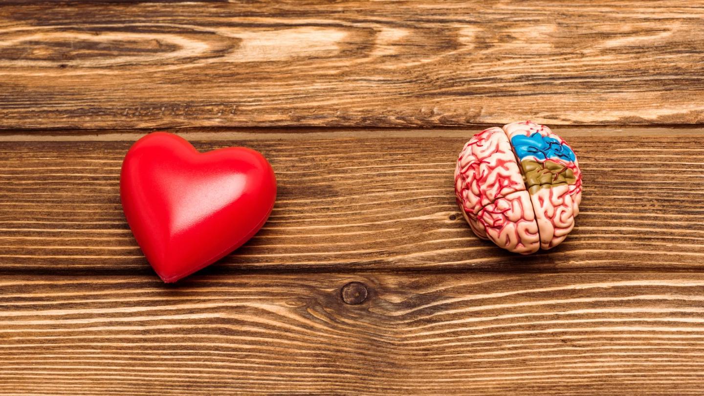 Сердечные заболевания в среднем возрасте связали с развитием деменции