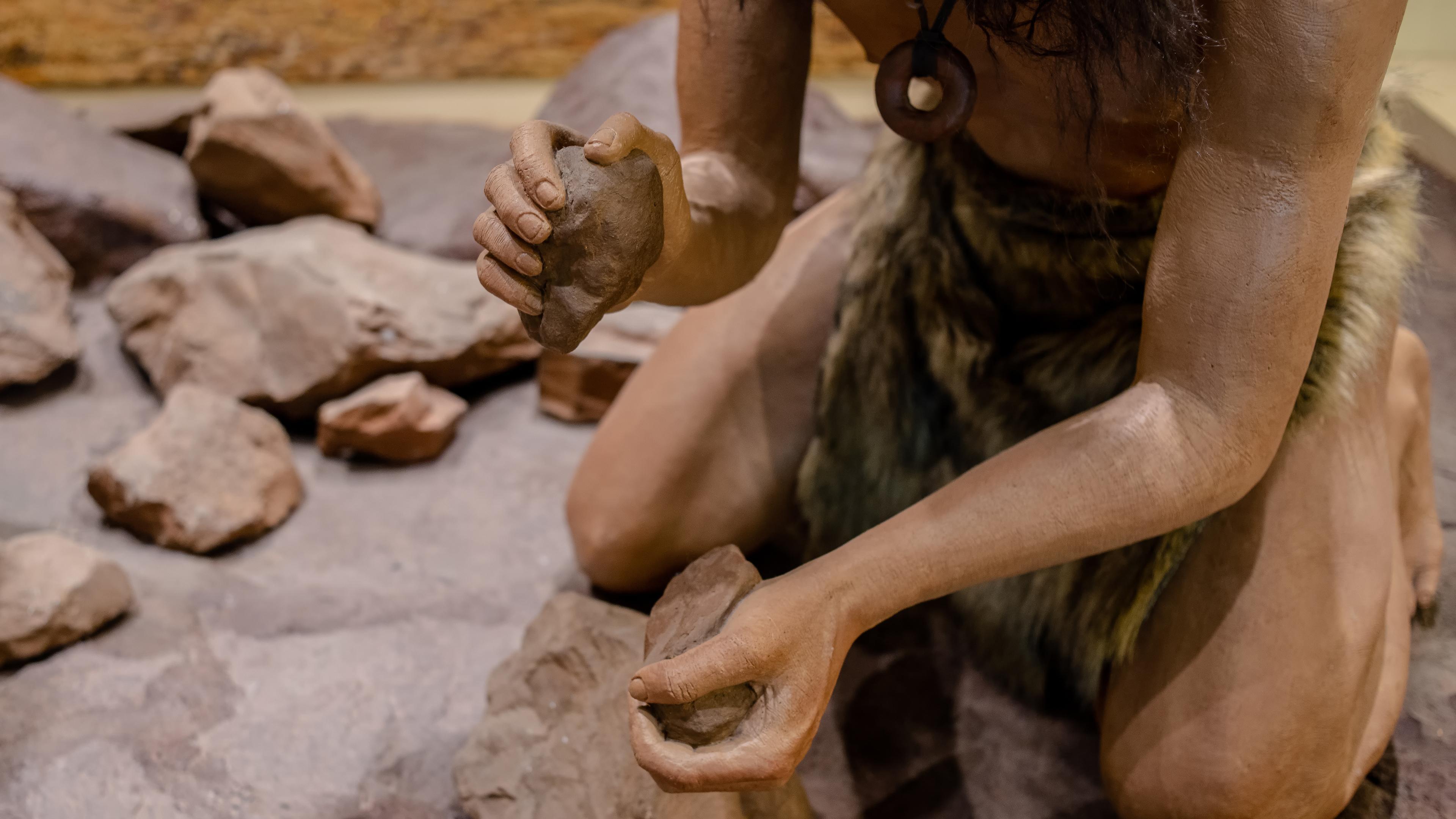 Неандертальцы, возможно, использовали те же технологии изготовления орудий, что и сапиенсы