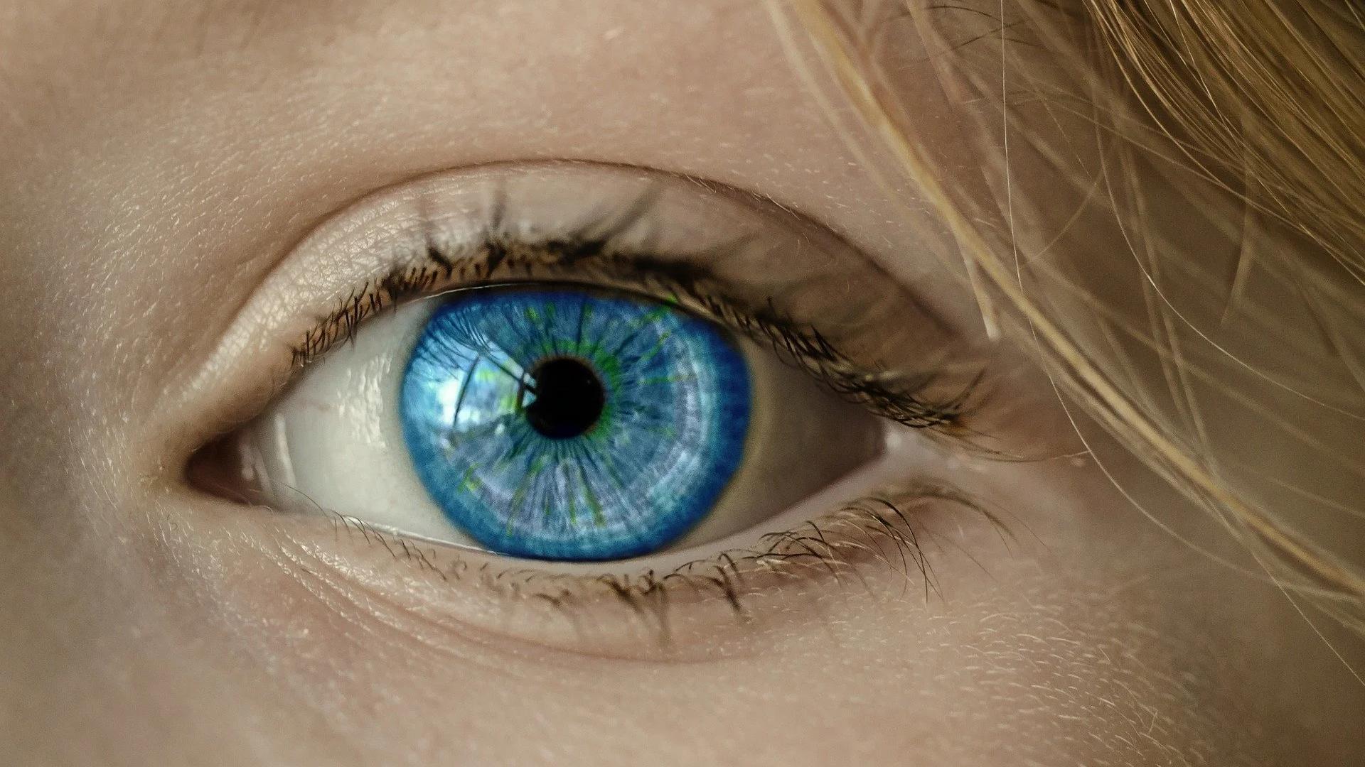 Хлороиндазол восстановил зрительные пути мышей с рассеянным склерозом