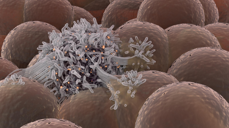 Злокачественные мутации появляются смолоду