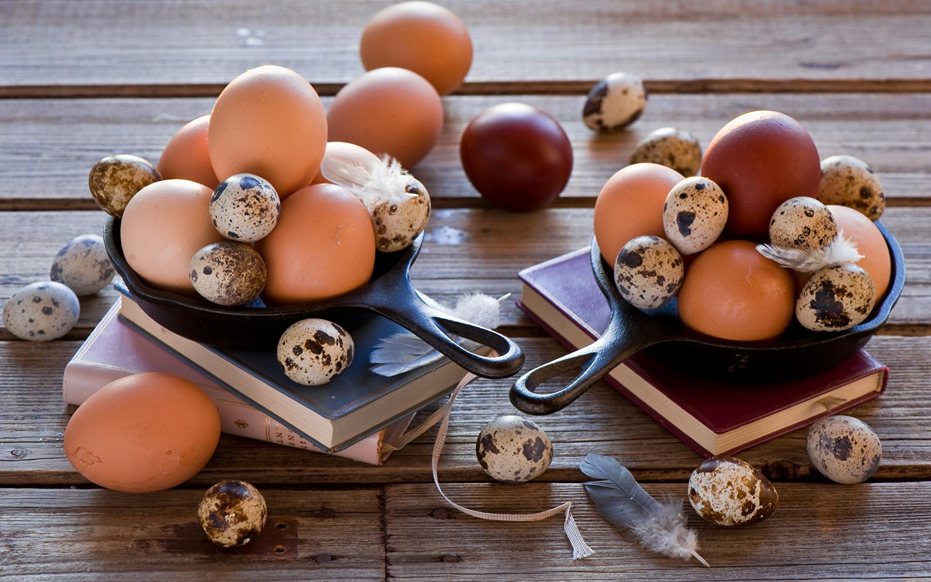 Яйца и их польза для организма человека