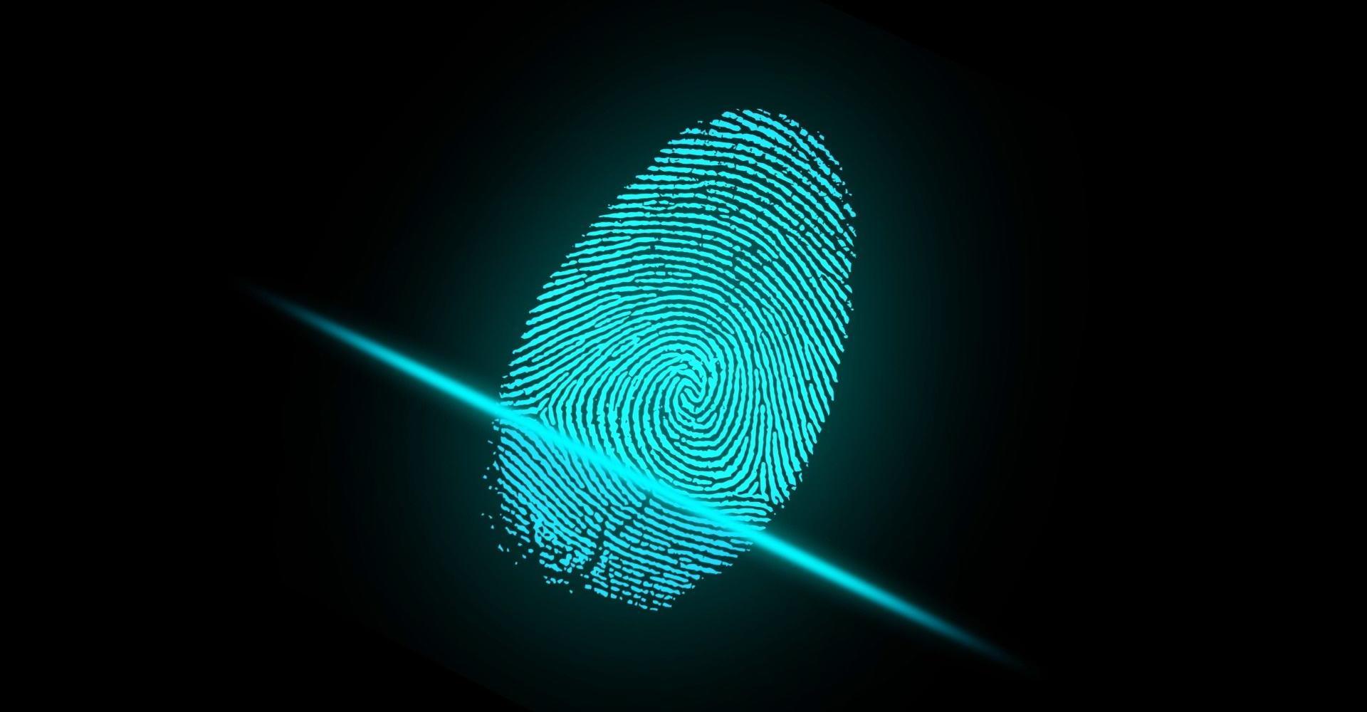 Отпечатки пальцев в контексте нейронаук