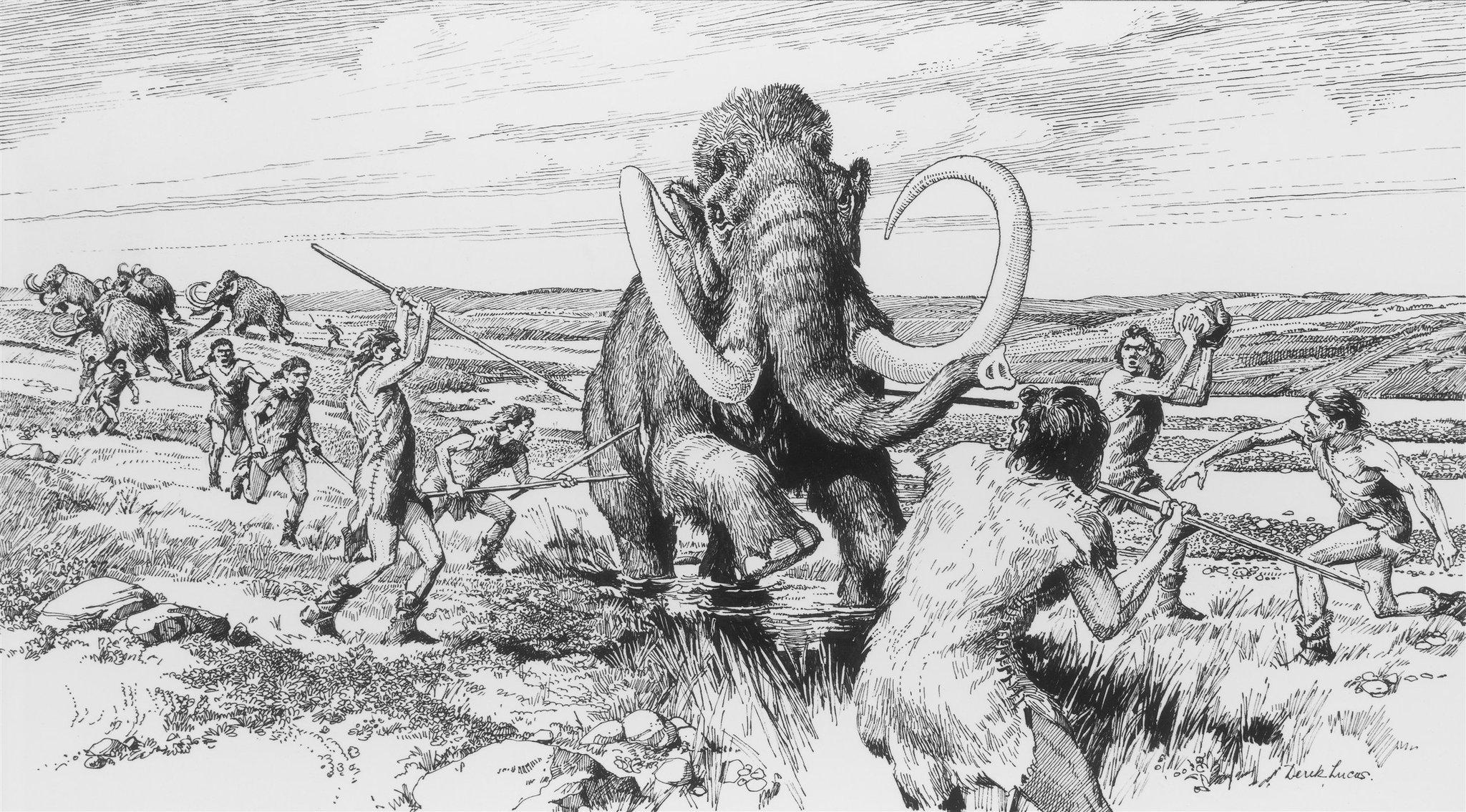 Если бы не люди, мамонты просуществовали бы дольше