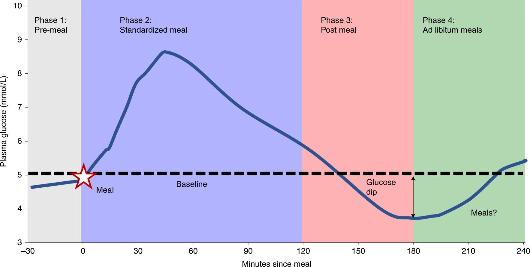 Как глюкозные «ямы» заставляют переедать