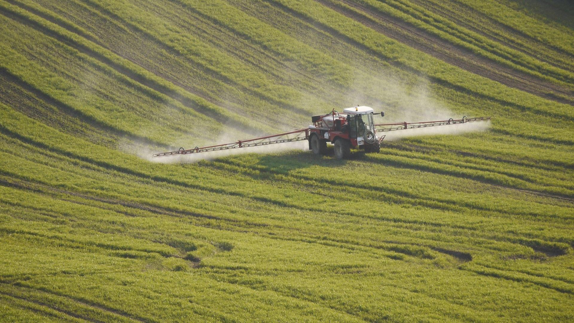 За последние 25 лет пестициды стали более токсичными для беспозвоночных