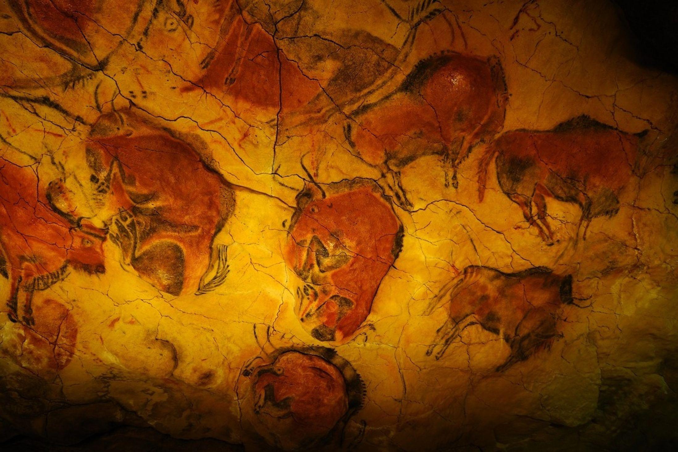 У сапиенсов выявили гены творчества, которых не было у неандертальцев