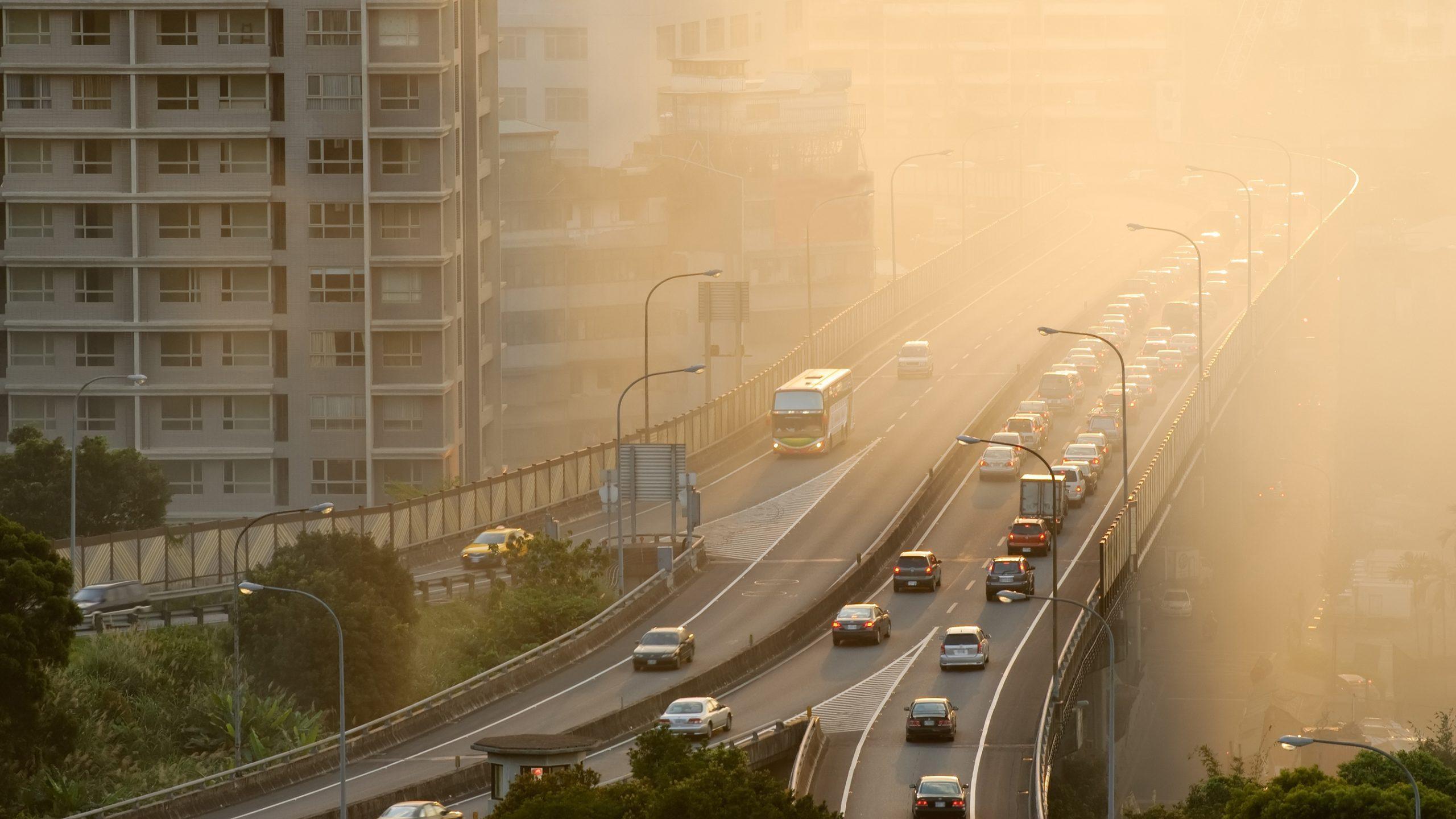 Воздействие загрязненного воздуха в детстве связали с психопатологиями во взрослом возрасте