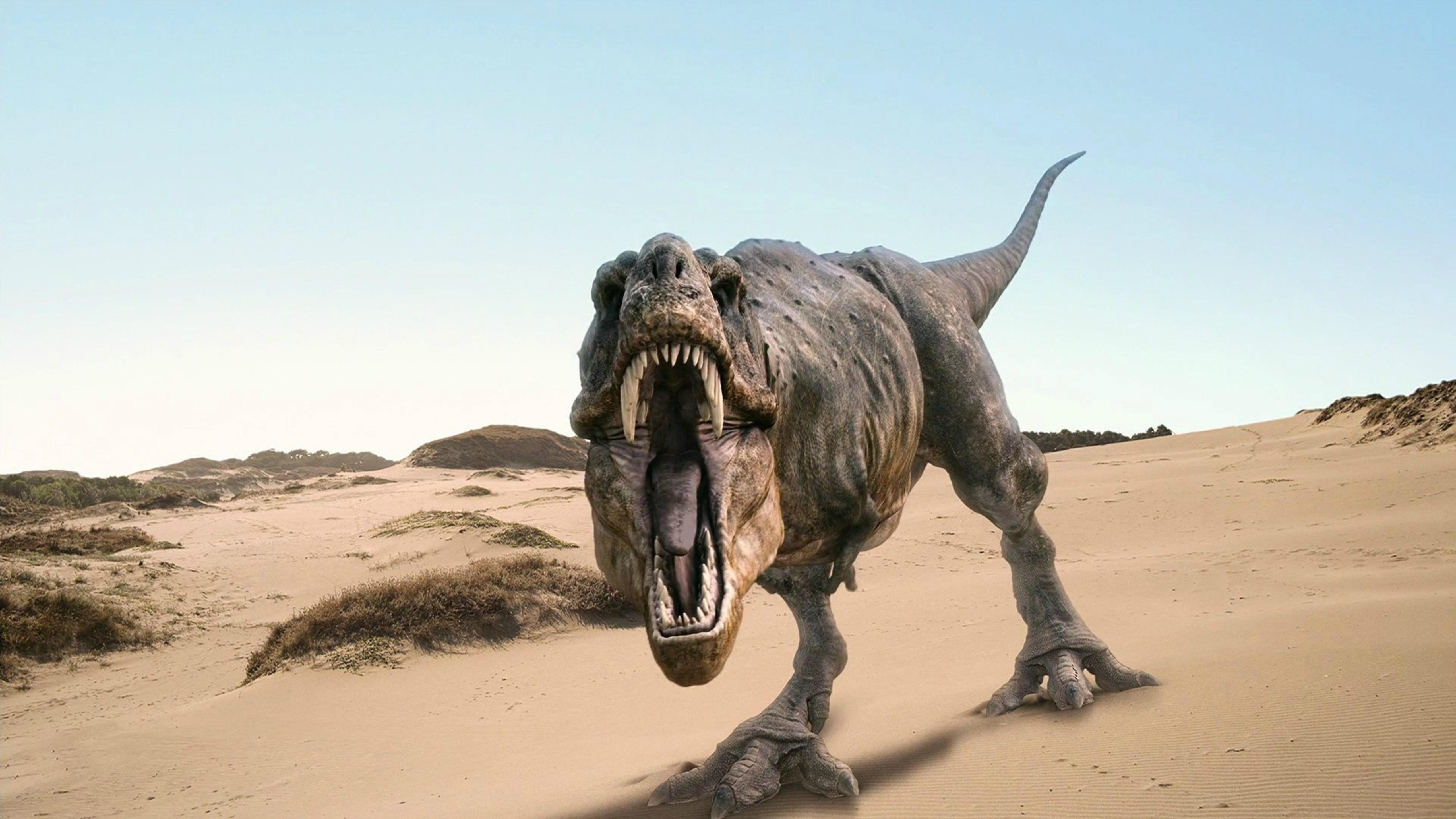 Показано, что тираннозавры не могли угнаться за своими детенышами-подростками