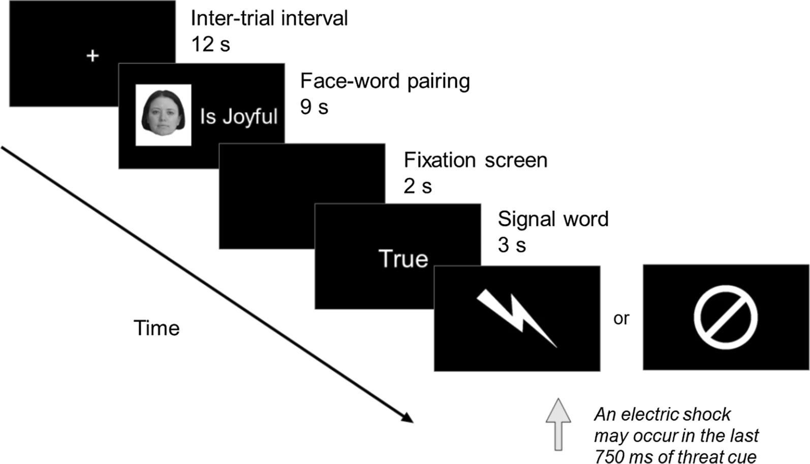 Стресс связали с забыванием ложной информации