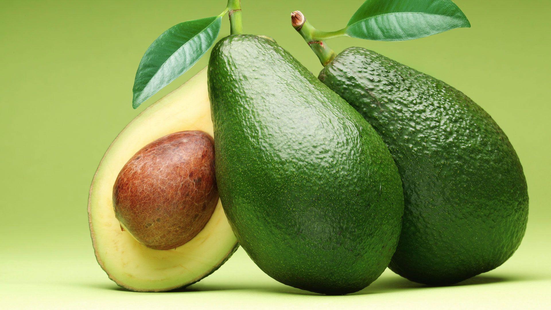 Авокадо поможет в лечении острого миелоидного лейкоза