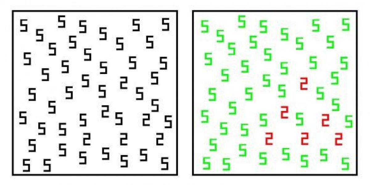 Чем синестеты отличаются от обычных людей?