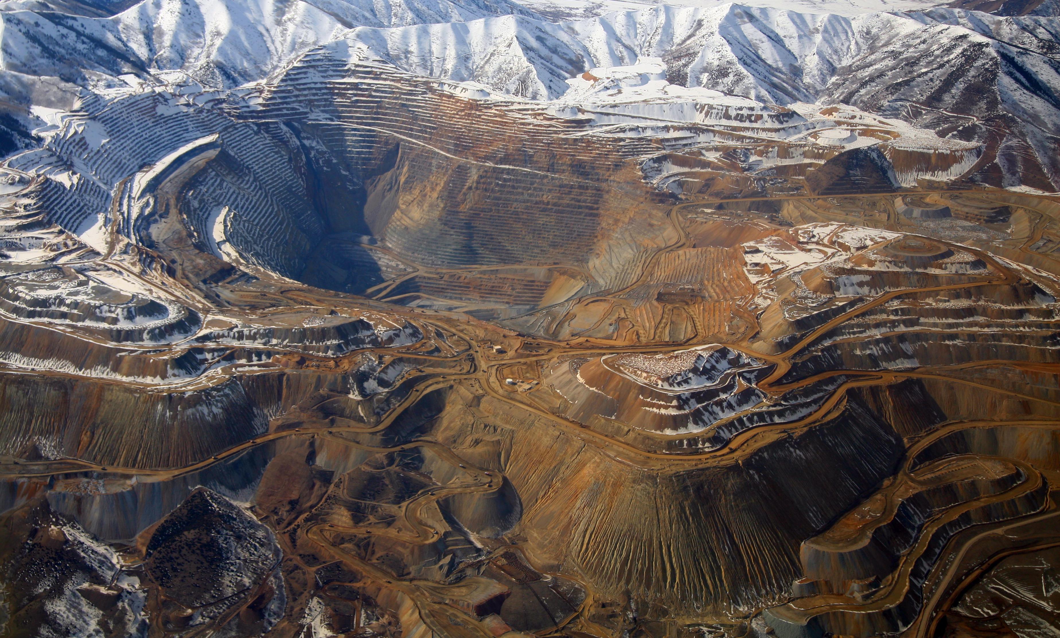 Медедобывающая бактерия из бразильских рудников