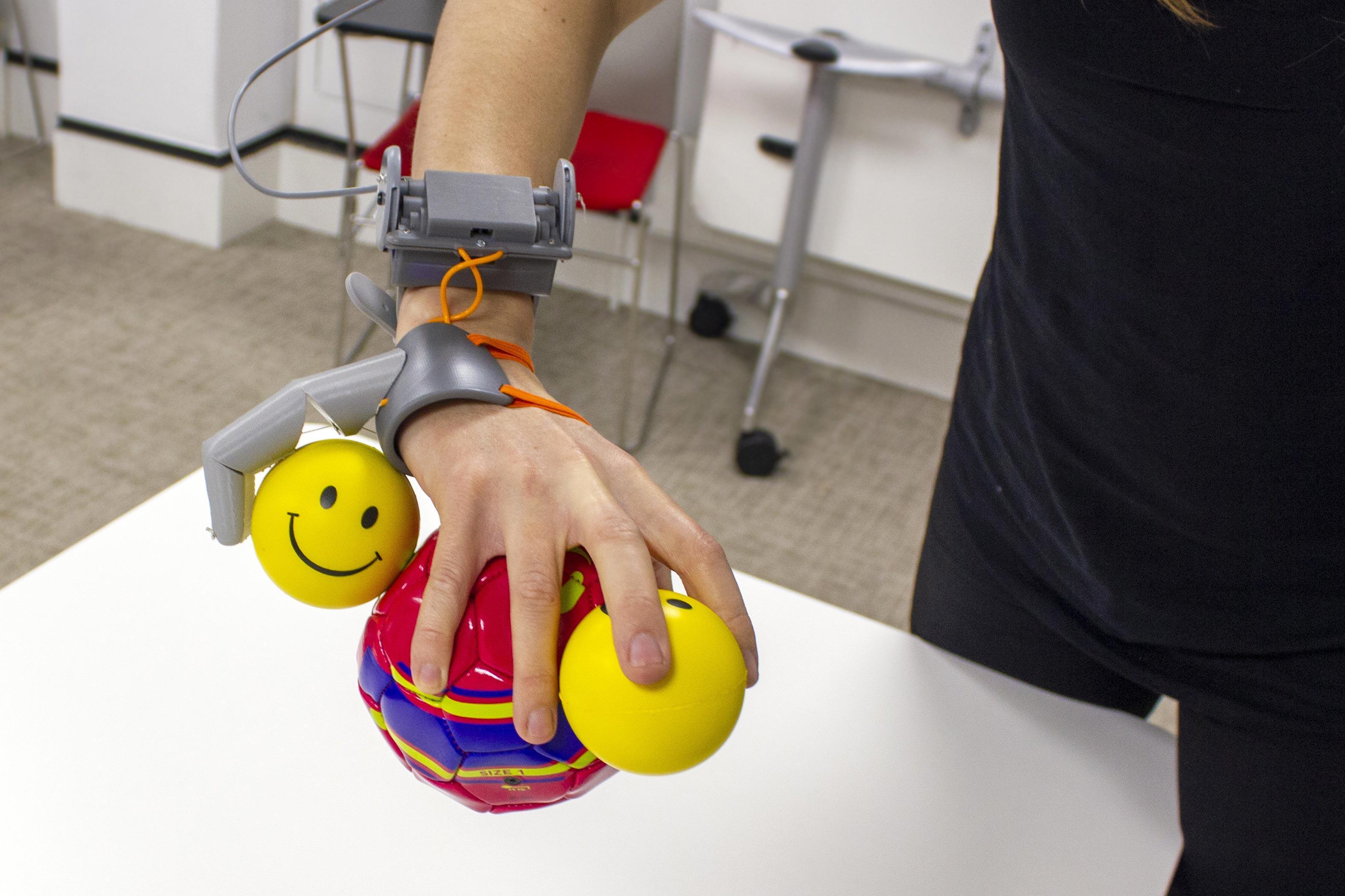 Дополнительный палец изменил представление руки в мозге