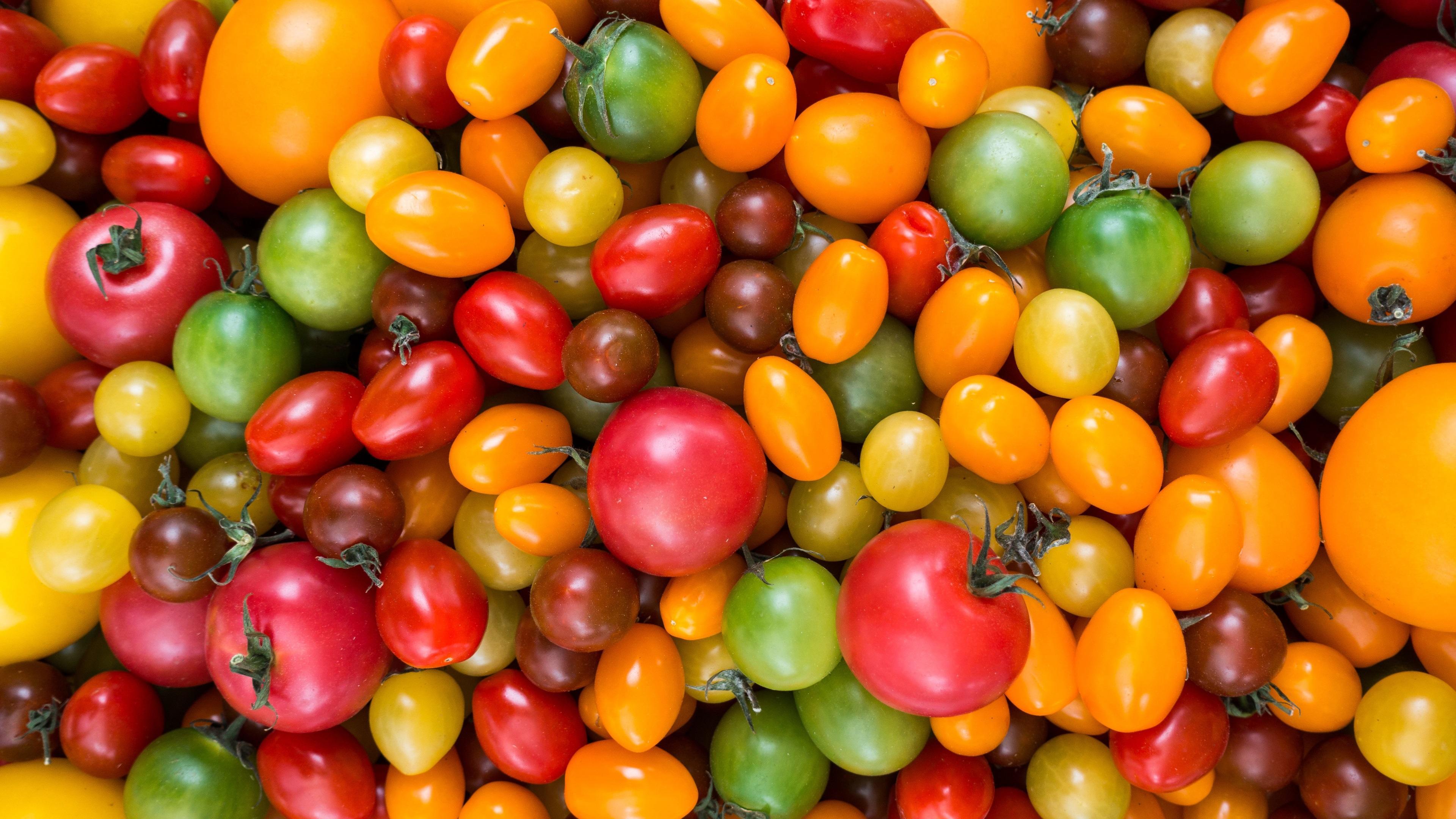 Уже не те. Почему помидоры потеряли вкус и как его вернуть