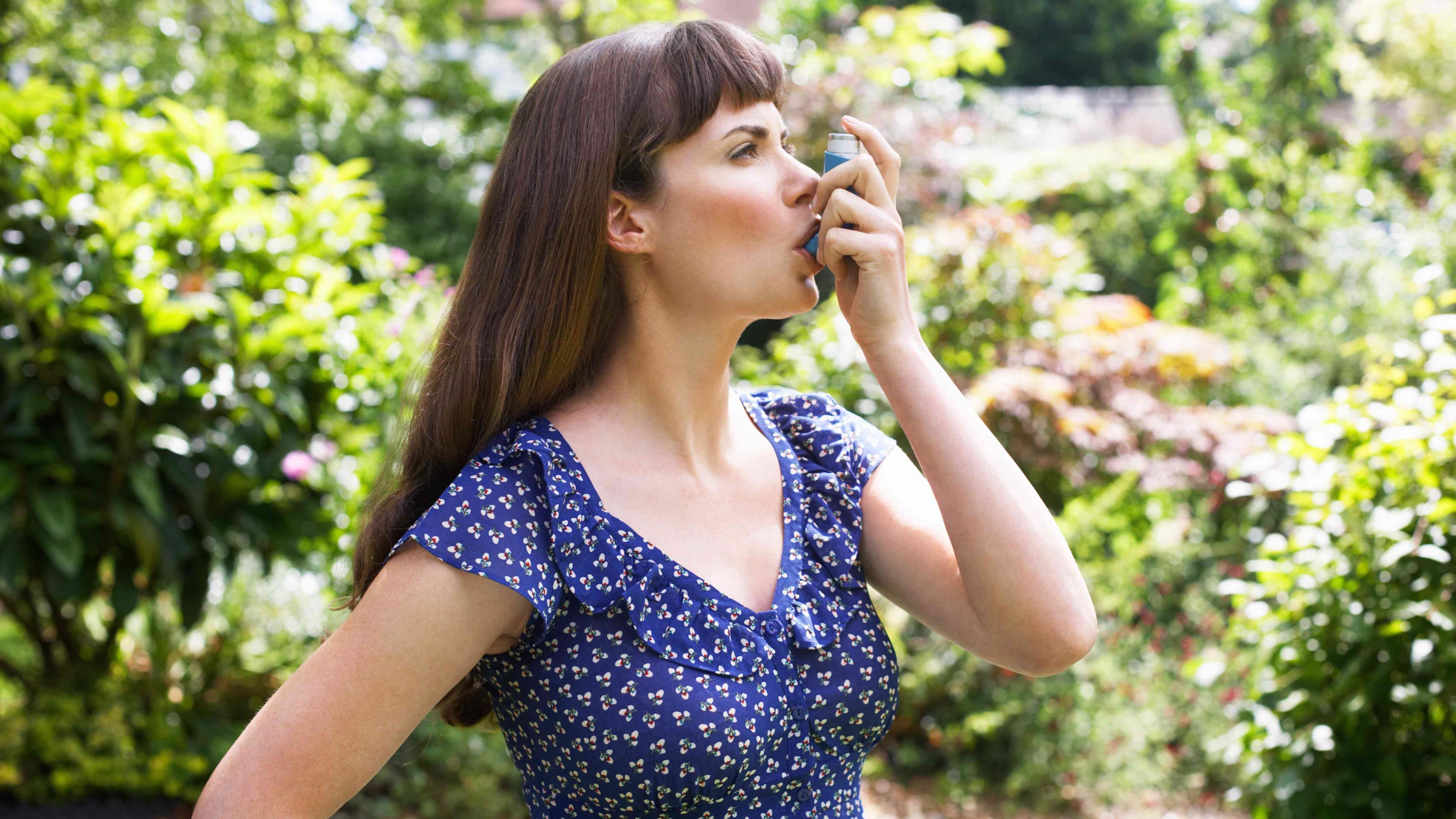 Биологи испытали новое средство от хронической аллергической астмы