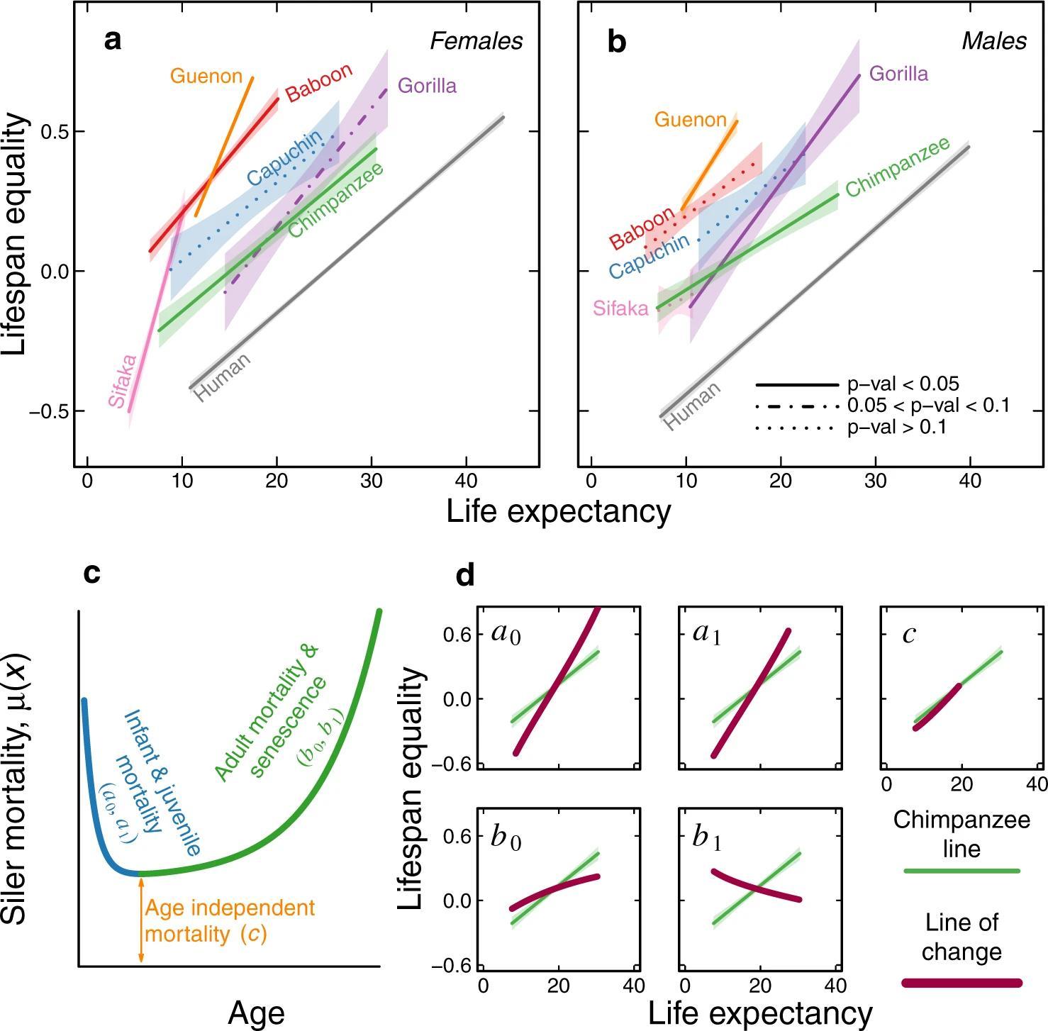 Геронтологи подтвердили гипотезу о неизменной скорости старения людей