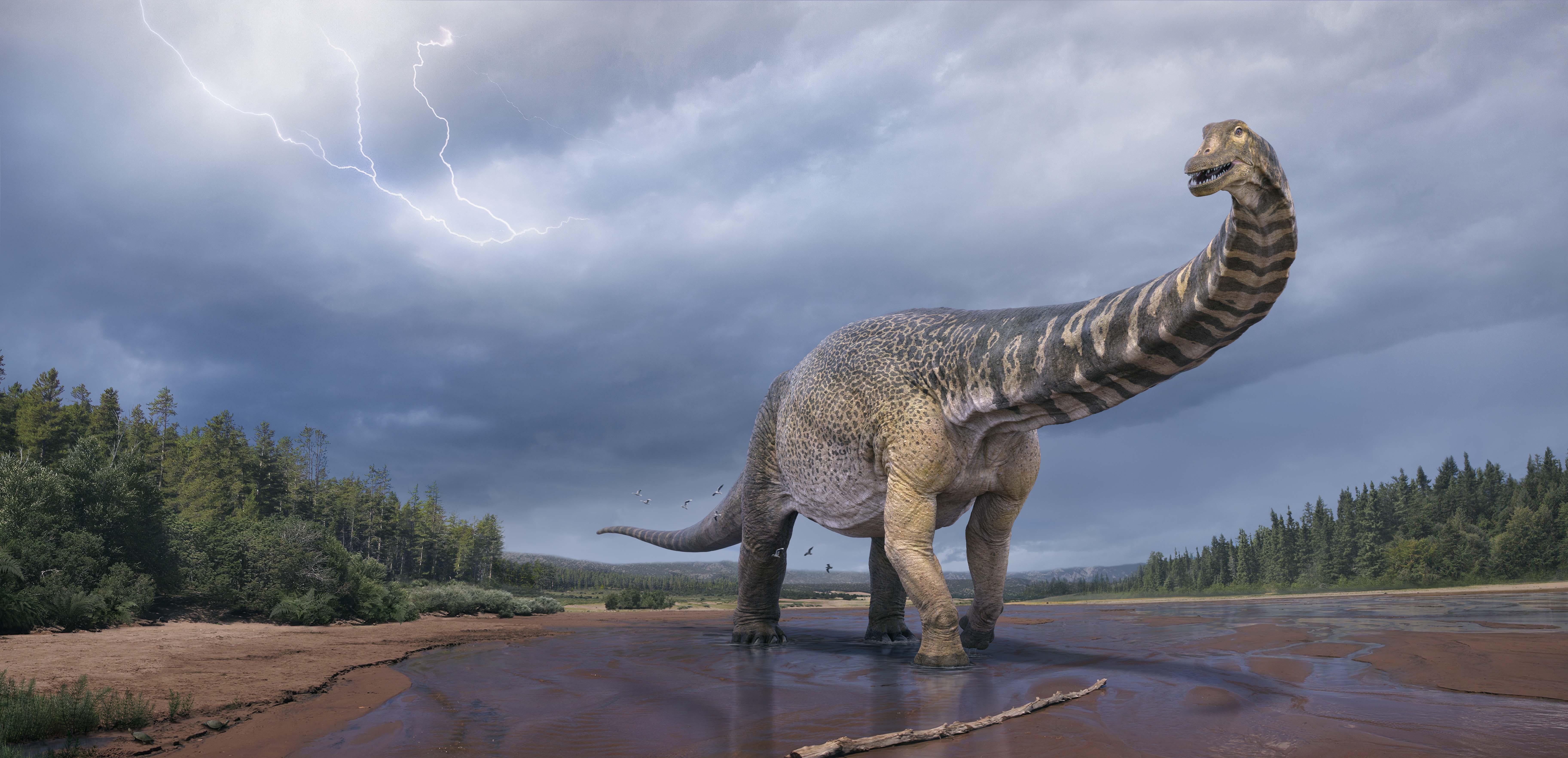 В Австралии открыли новый вид гигантского титанозавра