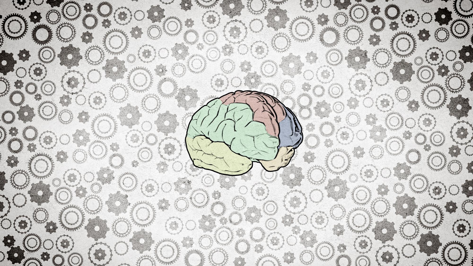 Нейробиологи обнаружили феномен, которому нет объяснения